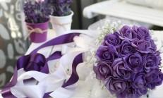 Canlı Gelin Çiçeği  Modelleri